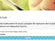 eEducation-Expertenstatus-20